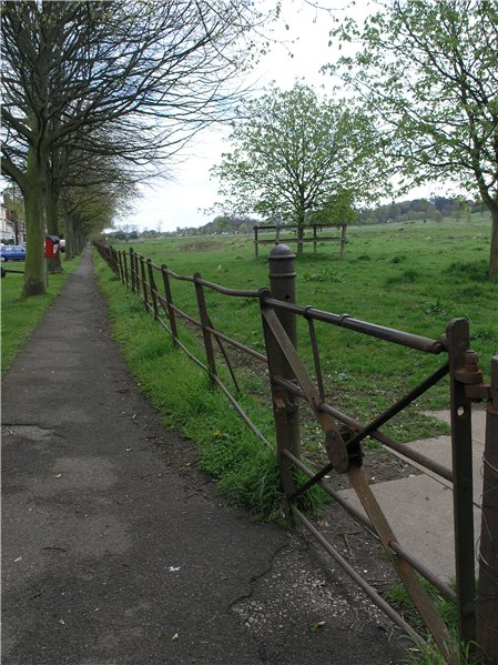 Late Victorian/Edwardian cast-iron fencing along the northern edge of South Common