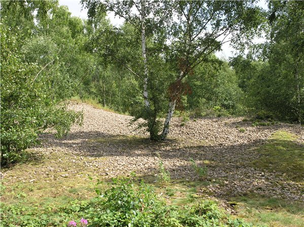 Spoil heap of larger stones created during the time when the area was used for quarrying in the 1950s