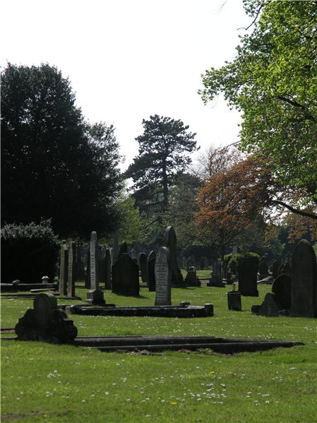 Canwick Road Old Cemetery showing headstones of varies styles as well as trees and greenery.