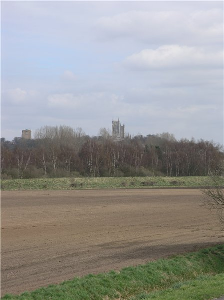 View of the west facade of Lincoln Cathedral and the water tower above a belt of trees, which screens the remainder of the city