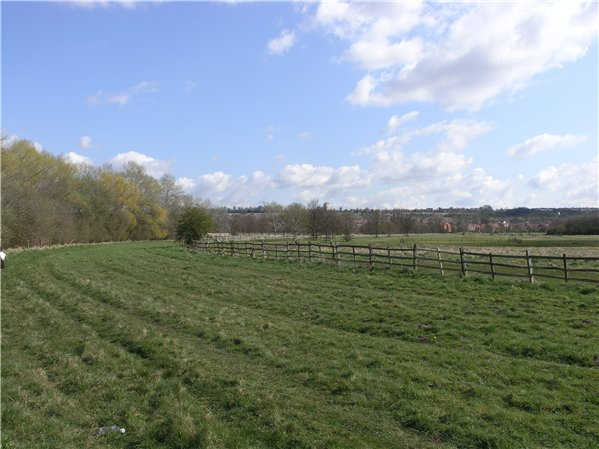 Part of the former racecourse track in the west of the Character Area. The former racecourse is covered in greenery and is tree lined on the left hand side and on the right has a low fence.
