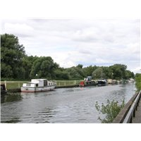 The Fossdyke Navigation, containing many houseboats, on one side of this is a grassy bank area with footpath and then shrubbery.