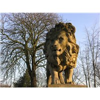Statue of a Lion located in the Arboretum
